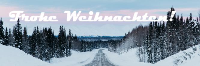 Frohe Weihnachten wünscht Ihnen das gesamte Scheibenwischer.com-Team